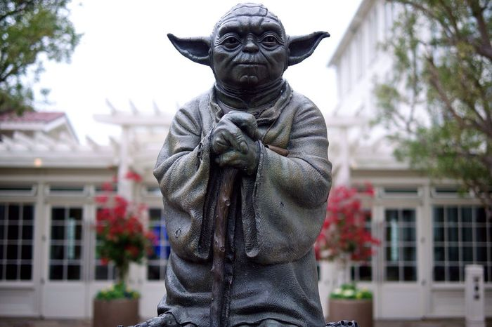 """""""Already know you that which you need!"""" Master Yoda"""