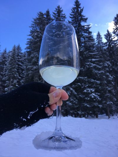 Close-up of human hand holding alcoholic drink against trees during winter