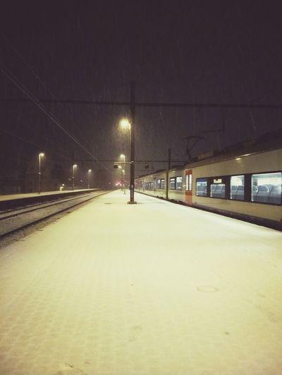 City Illuminated Snowing Snow Cold Temperature Winter Frozen Railroad Station Platform Railroad Platform Railroad Station Passenger Train Rail Transportation Train Public Transportation