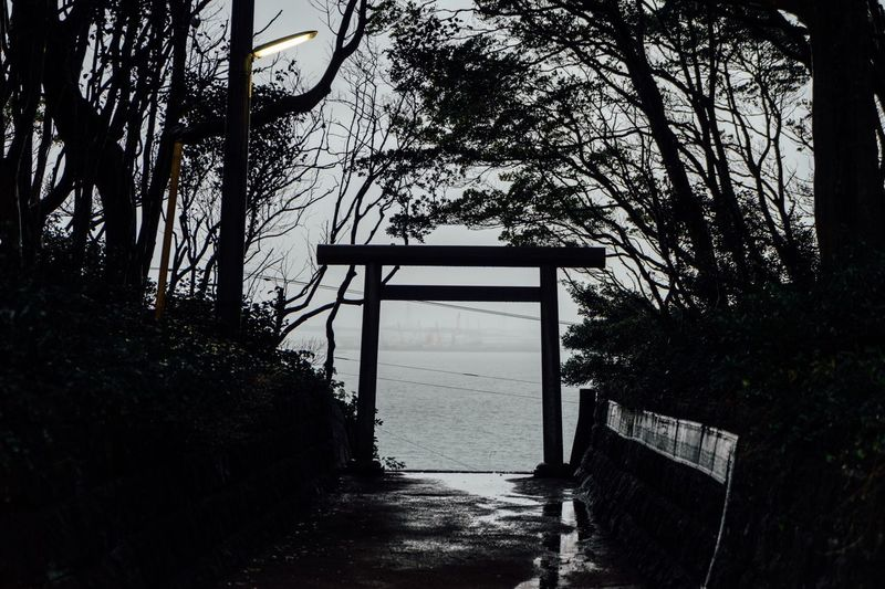 Sanctuary Of Truth After The Storm Torii Gate On The Beach Rainy Days Mysterious Place In The Forest Silhouette Silhouettes Shinto Shrine No People Trees Branches Alone Time Gate Travel Photography Traveling Hitachinaka October October 2017