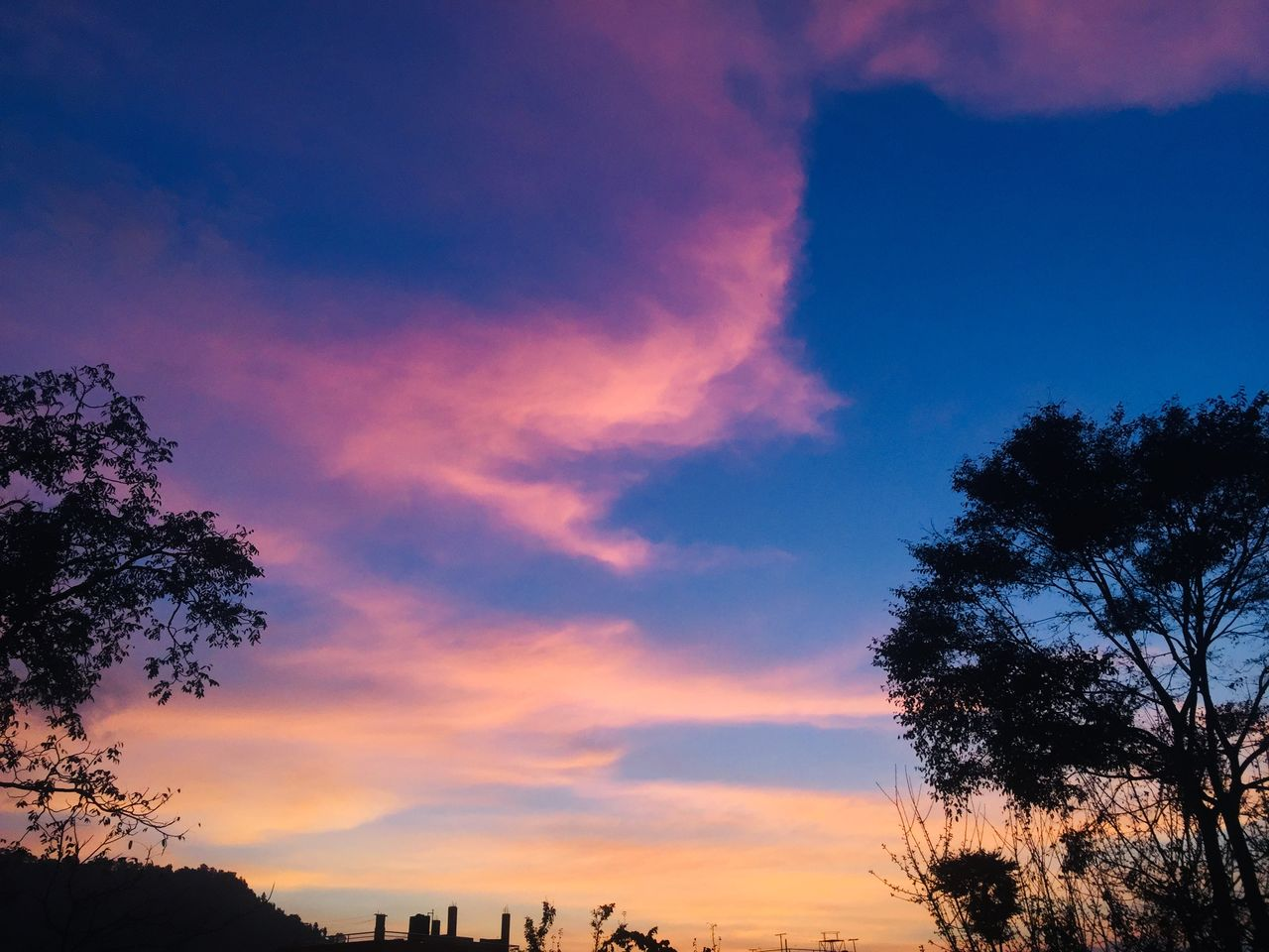 sky, sunset, cloud - sky, tree, plant, beauty in nature, scenics - nature, silhouette, nature, tranquility, tranquil scene, no people, orange color, low angle view, outdoors, idyllic, growth, dramatic sky, dusk, architecture, romantic sky