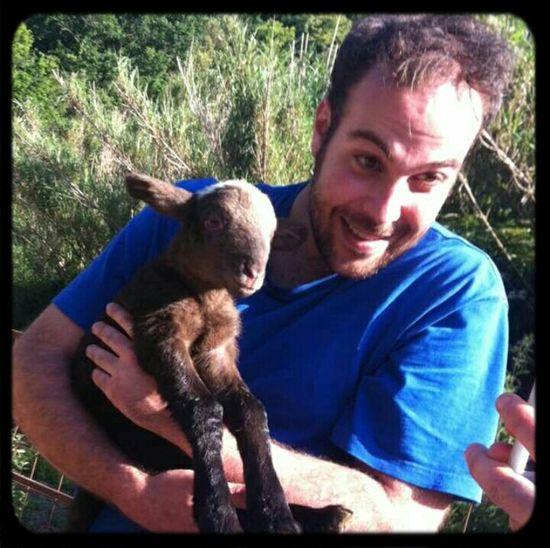 Bon dilluns! Xai Anyell Lamb Animal Love