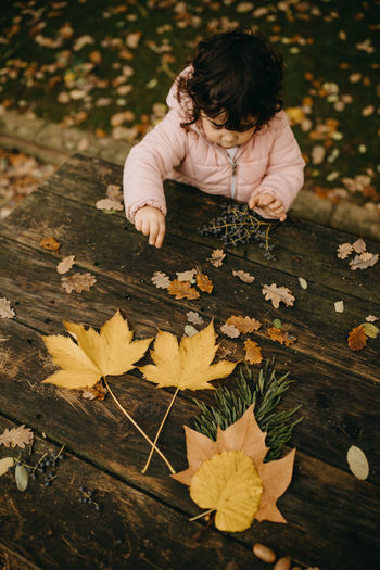 High angle view of boy on dry leaves during autumn