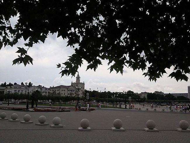 City Foliage Leafage Leaves Novorossiysk Outdoors Russia Silouette Street Набережная Адмирала Серебрякова новороссийск