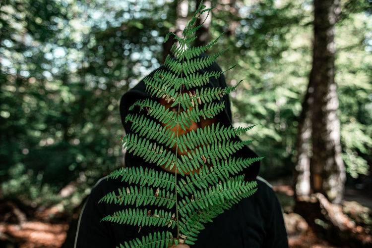Portrait of person in forest