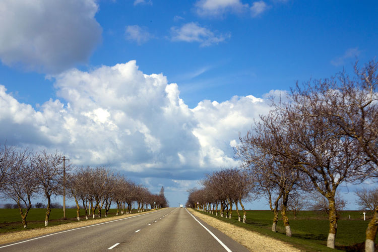 Beauty In Nature Blue Cloud Cloud - Sky Cloudy Country Road Diminishing Perspective Empty Empty Road Landscape Long Nature Telling Stories Differently Non-urban Scene Outdoors Road Road Marking Scenics Sky Springtime The Way Forward Tranquil Scene Tranquility Tree Vanishing Point