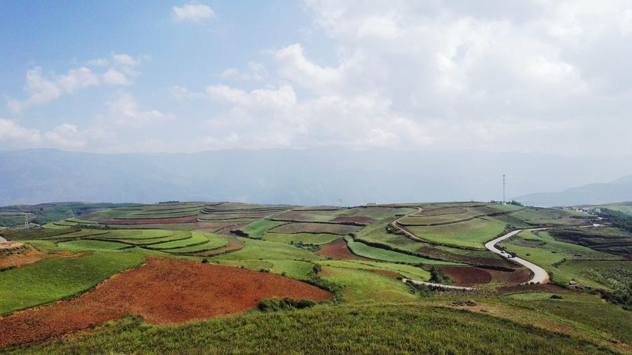 Landscape Tranquil Scene Tranquility Scenics Field Agriculture Sky Beauty In Nature Rural Scene Nature Farm Cloud - Sky Remote Non-urban Scene Green Color Outdoors Solitude Growth Day Countryside