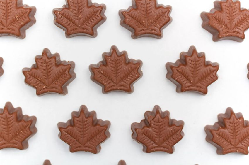 maple leaves chocolate truffles on white background/ canada Brown Chocolate Indulgence Maple Leaves Studio Shot Sweet Food Truffles White Background