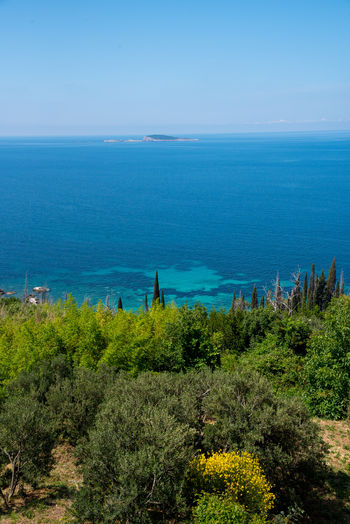 Croatia Croatian Coast Adriatic Adriatic Coast Adriatic Sea Beauty In Nature Blue Clear Sky Day Grass Growth High Angle View Horizon Over Water Nature No People Outdoors Plant Scenics Sea Sky Tranquil Scene Tranquility Travel Destinations Tree Water