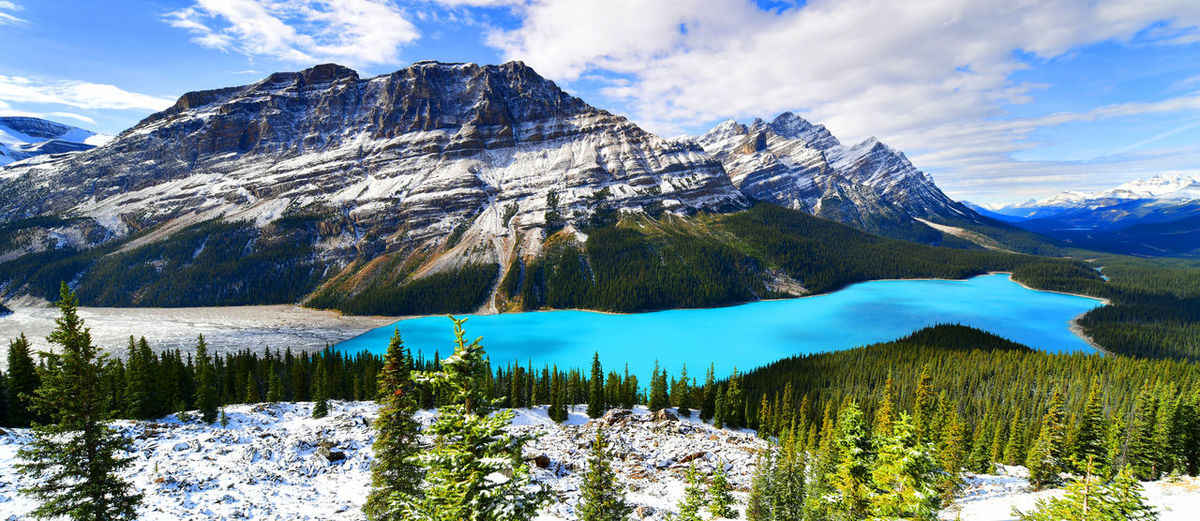 Panorama View from Bow Summit of Peyto lake in, Canada. Banff National Park  Bow Summit Canadian Peyto Lake Beauty In Nature Canada Cloud - Sky Cold Temperature Day Lake Landscape Mountain Mountain Range Nature No People Outdoors Scenics Sky Snow Snowcapped Mountain Tranquil Scene Tranquility Tree Water Winter