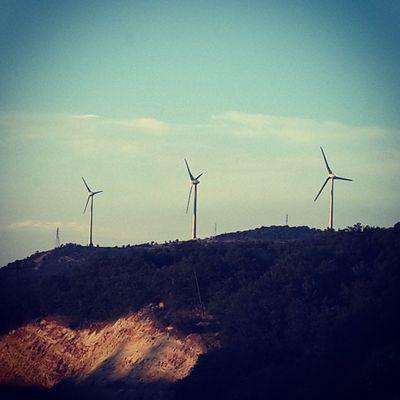 Temizeneji Windpower Echofriendly Photooftheday Instagood Green
