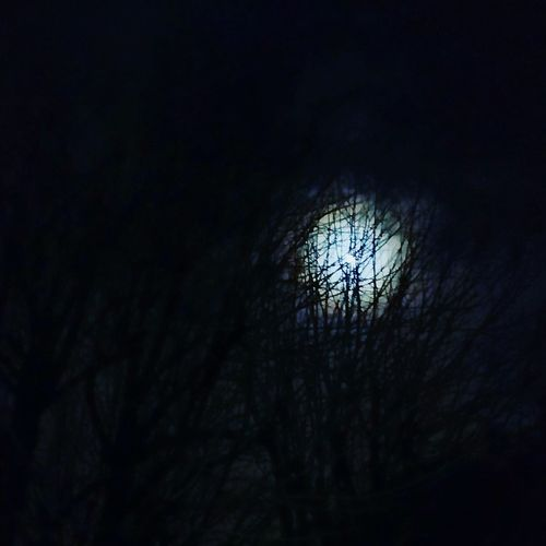 Night Lights Moonlight Night View ShootingAround Nightphotography Moon Nature Shooting In The Dark Learn & Shoot: After Dark Photography Brunches Out Of The Woods Capturing The Moon EyeEm Best Shots