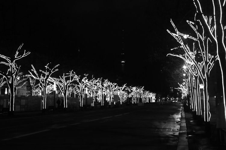 Berlin Night Trees Monochrome Eye4black&white  Light And Shadow Streetphoto_bw Shootermag Vanishing Point Darkness And Light