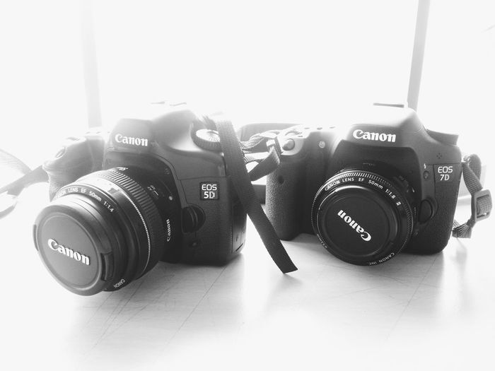 Canon EOS 5D and Canon EOS 7D 50mm 5d 7D Camera Canon DSLR EOS Lens Lens Cap Product Product Photography White