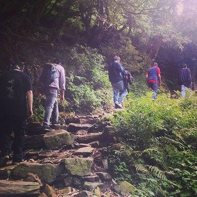 The Mystical Trail Braveharbor Himachalpradesh