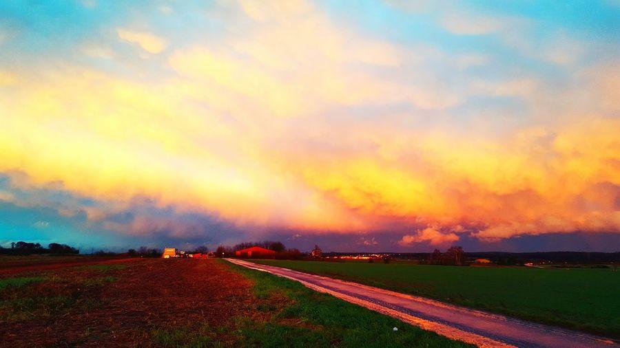 driving home First Eyeem Photo