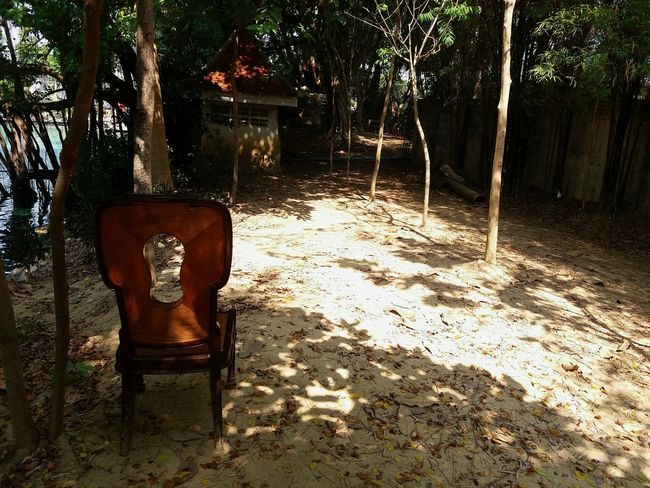 Lonely wooden chair with sunlight in the jungle. Shadow Day Tree Nature Outdoors Sand Chair Wood - Material Wooden Chair Forest Tree Light And Shadow Objects Alone Shelter Home Construction Sitting Seat Decoration Art Plants 🌱 Growth