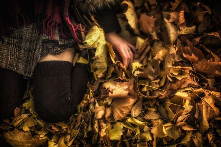 Sanctuary Autumn Mini Skirt Absolute Territory Thigh Gap @上野