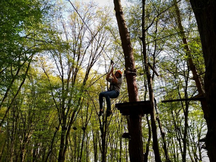 Zipline Ziplining Zipline Adventure Ziplining In The Forest Adrenaline Tree Full Length Childhood Climbing Standing Sky Jungle Gym Slide - Play Equipment Rope Swing Swing