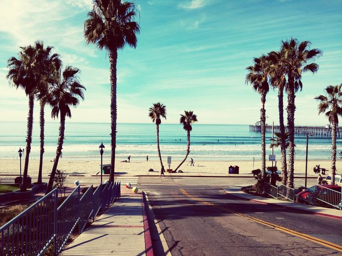 Southern California Beach Life Horizon Over Water California Pier Palm Trees Surfing Life San Diego First Eyeem Photo