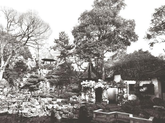 Yu Yuan Garden Tree Day Outdoors Nature Sky No People
