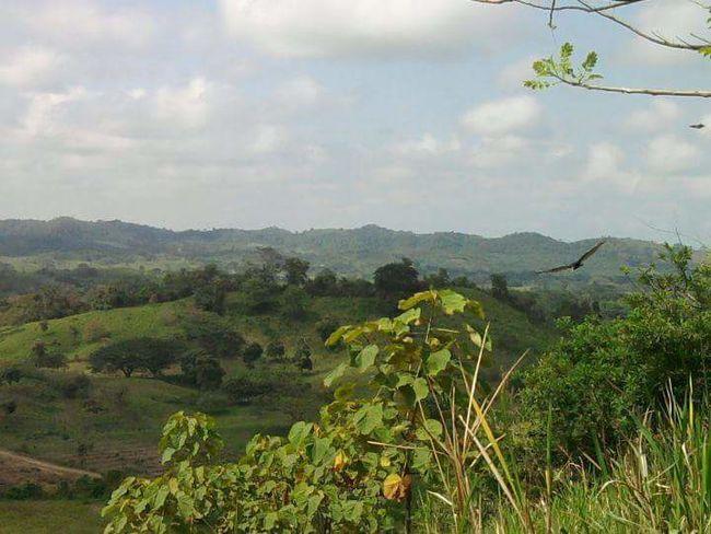 All You Need Is Ecuador Manabi Ecuador Nature Countryside