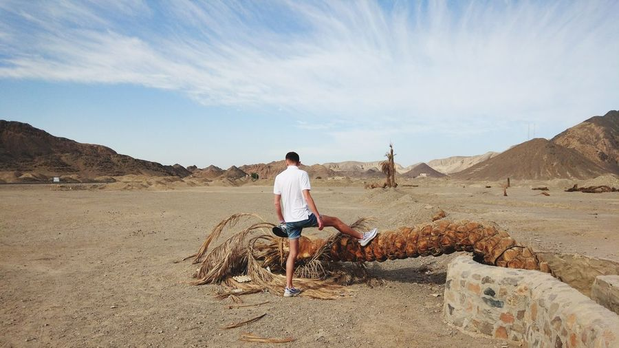 Rear view of man standing by fallen tree in desert against sky