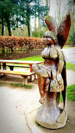 Wood Wood Art Nature Naturelovers Wildpark Düsseldorf-Walk FeenWorld Walking Around Spring In The City Spring Düsseldorf