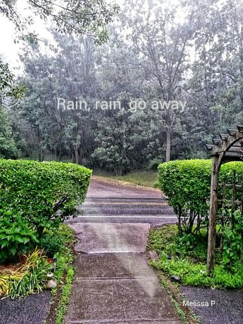 Check This Out Hdr_Collection Rain EyeEm Best Shots - Nature