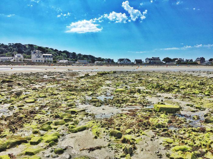 Coastline Landscape Beach Walk