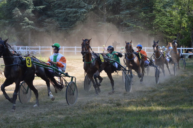 Group of people running horses