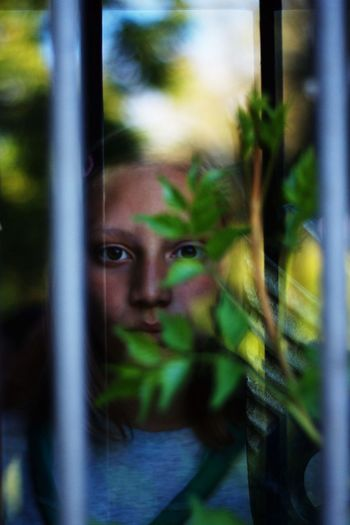 Portrait of girl by plant seen through glass window