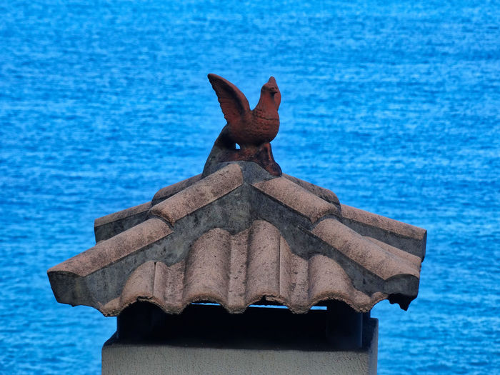 Interesting house decoration. House Ornament Architecture Building Exterior Buildings Building Feature Focus On Foreground Representation Sea Animal Themes Water No People Close-up Bird Blue Day Art And Craft Sculpture Chimney Chimney Tops Tiled Roof  Roof Rooftop Roof Tile