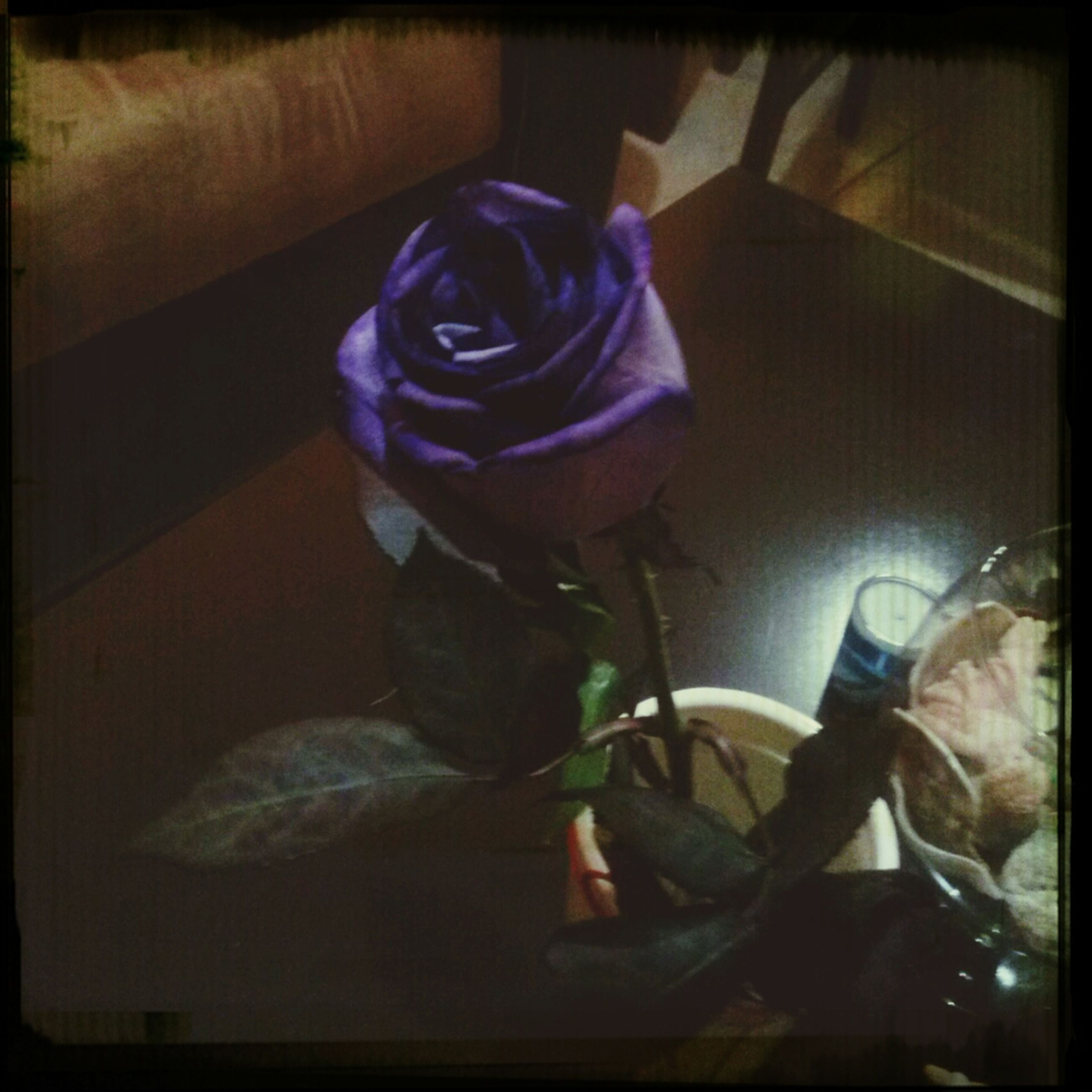 indoors, transfer print, auto post production filter, home interior, bed, flower, domestic room, bedroom, childhood, high angle view, toy, purple, table, close-up, sitting, domestic life, still life, home