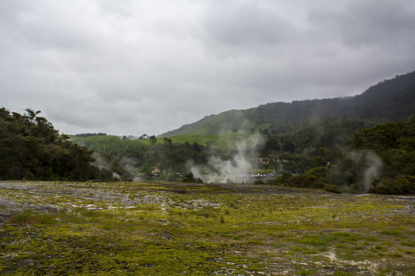 Geothermal landscape with hot springs and steam from geysers, New Zealand Impressive Steam Travel Wanderlust Beauty In Nature Boiling Water Earthquake Environment Geological Formation Geology Geothermal  Geothermal Activity Heat - Temperature Hidden Valley Hot Pools Hot Spring Landscape Nature New Zealand No People Non-urban Scene Power In Nature Scenics - Nature Tranquil Scene Volcanic