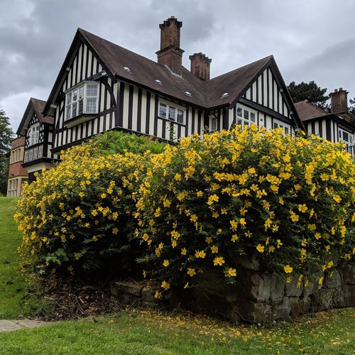 Tudor House Flowers Yellow Rural Scene Yellow Residential Building Old-fashioned History House Detached House