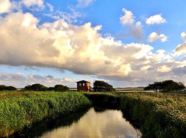 The sanktuary EyeEm Tadaa Family Denmark Nature Landscape