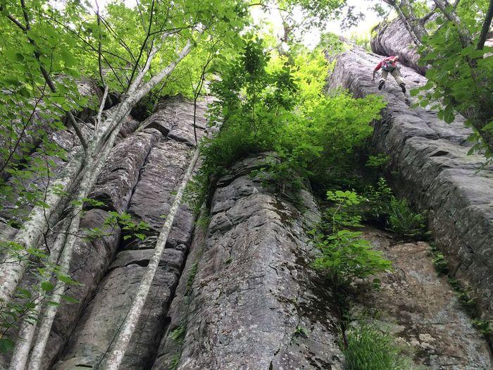 石垣山 Climbing Crackclimbing 1年ぶりのクラック…やっぱ奥深い( ̄Д ̄)ノ