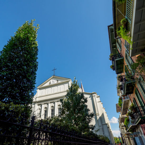 Backside of St. Louis Cathedral in the French Quarter Architecture Blue Building Exterior City Cityscape Clear Sky Cross French Quarter French Quarter Architecture No People Outdoors Sky St. Louis Cathedral Travel Destinations Tree