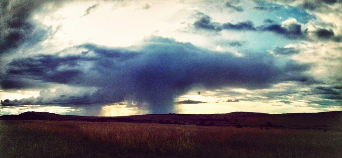 Rain Shower in