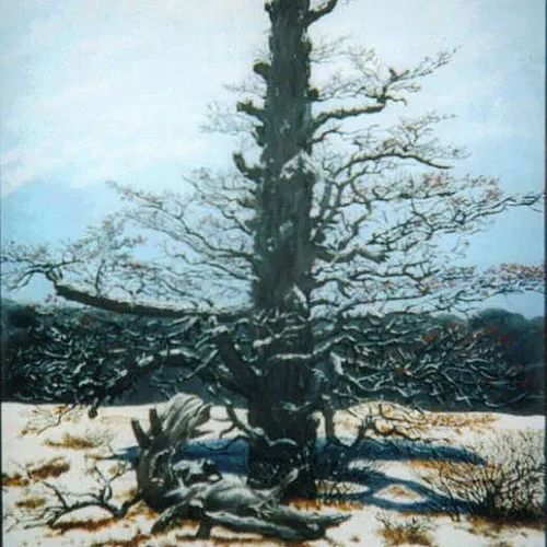 TBT  to a very old rendition I did around 15 years ago. Caseyoneillart Toronto Torontoartist art tree acrylic