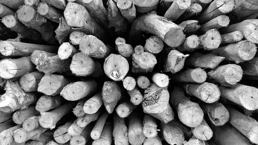 wood Backgrounds Stack Wood Texture Monochrome