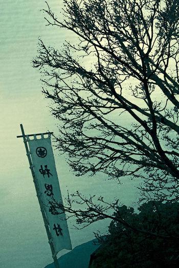 =Nobori or Banner= The photograph was taken around Ise-jingu Shrine in ise-city, Japan. EyeEmbestshots Japanese  Japanese Culture Nippon Travel Eyeemgallery Fineartphotography Nippon Photography No People Photography Photography Themes Sky Tree