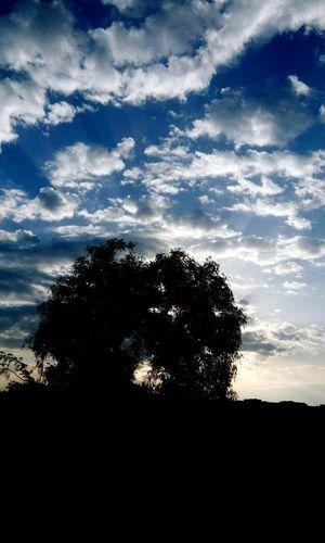 Today :) Morning Sky رجعت_الشتوية