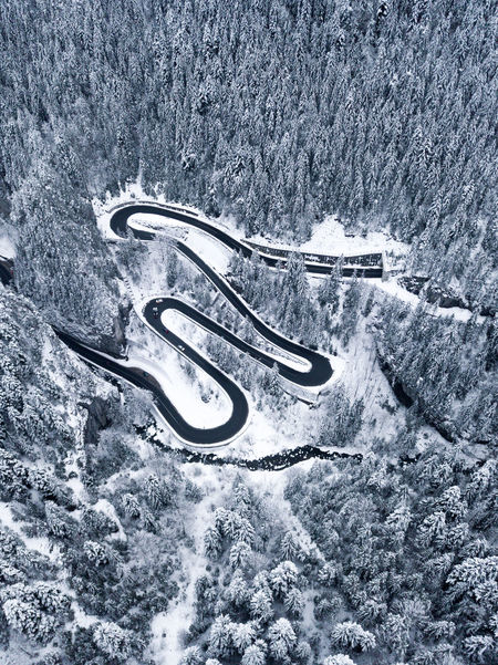 Curve Landscape_Collection Road Snow ❄ Tranquility Transportation Wonderful Beauty In Nature Cold Temperature Day Frozen High Angle View Highway Landscape Nature No People Outdoors Snow Snow Covered Tree Water Weather White Background Winding Road Winter