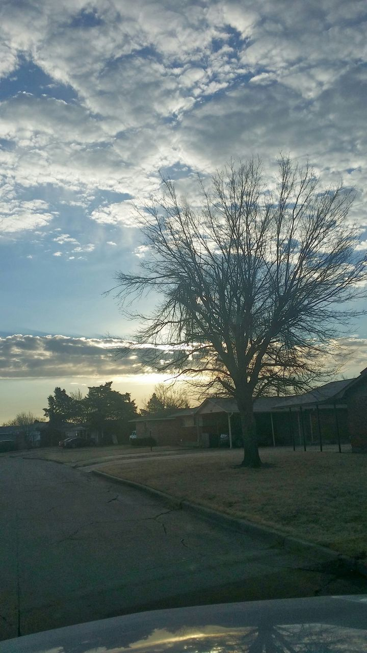 tree, bare tree, sky, cloud - sky, road, no people, car, outdoors, tranquility, day, landscape, nature, transportation, scenics, beauty in nature, grass