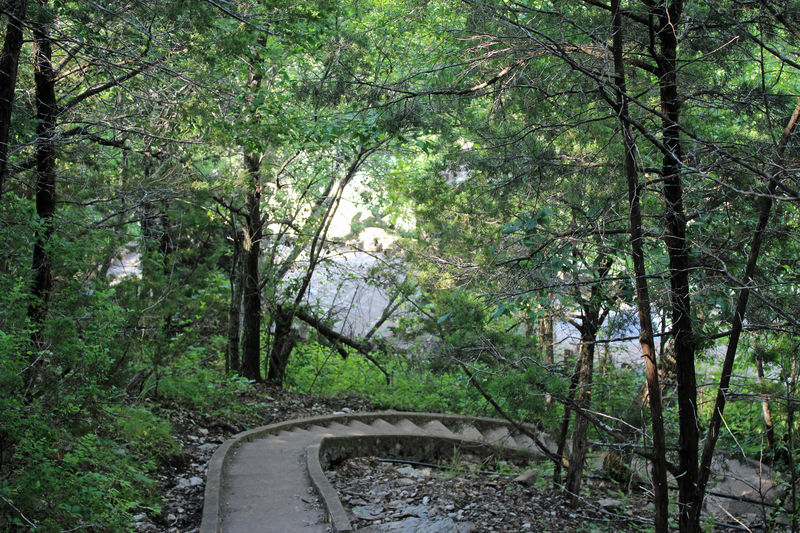 Turner Falls, Oklahoma Beauty In Nature Day Direction Downward Steps Forest Growth Land Landscape Nature No People Outdoors Tranquility WoodLand