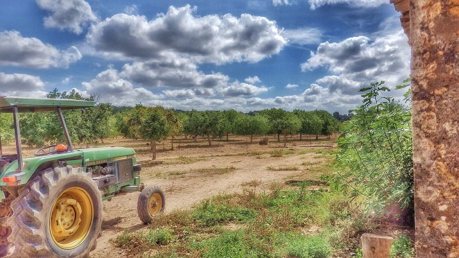 Almond Tree Plantage EyeEm Best Edits Old Tractor Clouds And Sky EyeEm Best Shots EyeEm Nature Lover EyeEm Best Shots - Landscape Enjoying The View John Deere Tractor