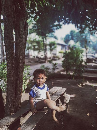 Full length portrait of boy sitting on tree