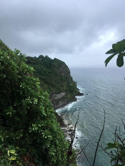 Dominica Beauty In Nature Day Growth Horizon Over Water Nature No People Outdoors Plant Scenics Sea Sky Tranquility Water